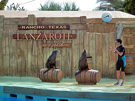Rancho Texas Park Excursions in Lanzarote