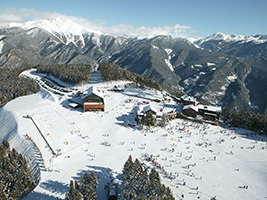 Vallnord forfait - Sector Pal Arinsal