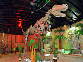 Discovery Theme Park Admission - Alanya