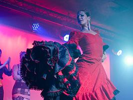 Special Discount Offer: Flamenco Show - Costa del Sol