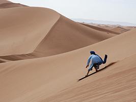 Morning Desert Safari - Ajman