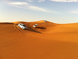 4x4 Evening Desert Safari with BBQ Dinner Excursions in Ajman