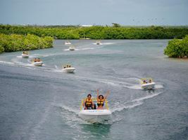 Jungle Tour, Cancun (and vicinity)