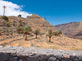 Descubre La Gomera desde Tenerife