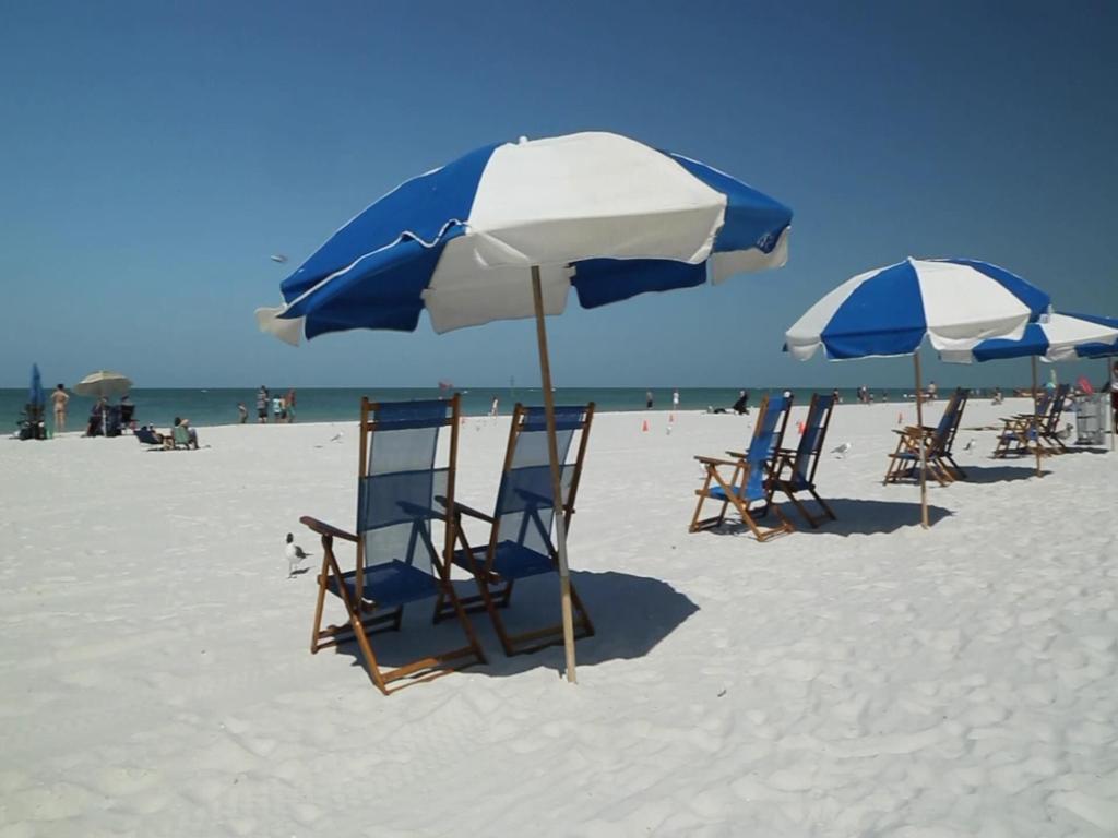 Visita a praia Clearwater