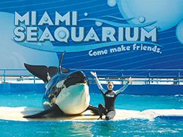 Miami Seaquarium, Miami Area - FL