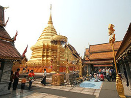 Half Day Doi Suthep Temple With City Temples From Hotel Inside Chiang Mai City Only, Chiang Mai