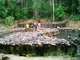 Rainforest Discovery, Krabi