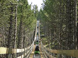 Naturlandia Tobotronc - Hoteles en Andorra