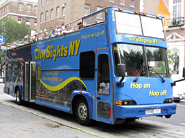 All Around Town  Tour + One Attraction, New York Area - NY