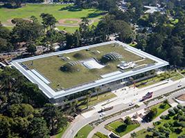 California Academy of Sciences, San Francisco Area - CA