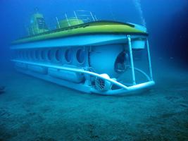 Submarine Tour with Transfer, Tenerife