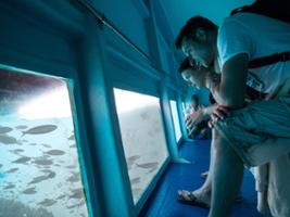 Atlantic Adventure - Glass bottomed boat, Lanzarote