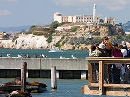 Skyline Sightseeing San Francisco Hop on Hop off Tour, San Francisco Area - CA