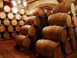 Mendoza Winery Tour, Costa de Valencia
