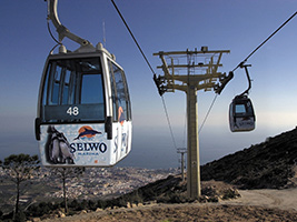 Paquete combinado Selwo - Teleférico, Selwo Aventura y Selwo Marina - Hoteles en Málaga Capital