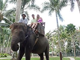 Half Day Elephant Safari Ride, Bali