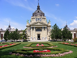 Budapest City Tour with Admission to Gellert Spa, Budapest
