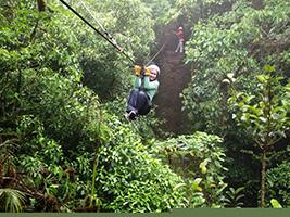 San Luis Canopy Tour, San José / Central Valley