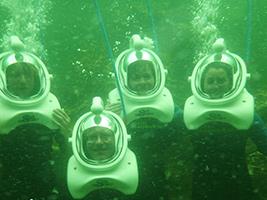 Seaquarium Sea Trek Reef Encounter, Miami Area - FL