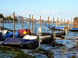 Semi-Private Venice Grand Canal Water Taxi Tour and St. Mark's Basilica - Skip the line, Venice (and vicinity)