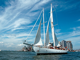 Shearwater Champagne Brunch sail, New York Area - NY