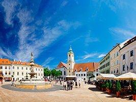 Bratislava by Bus and Boat, Vienna