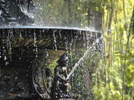 Botanic Garden and Maracana Stadium visit – private, Rio de Janeiro
