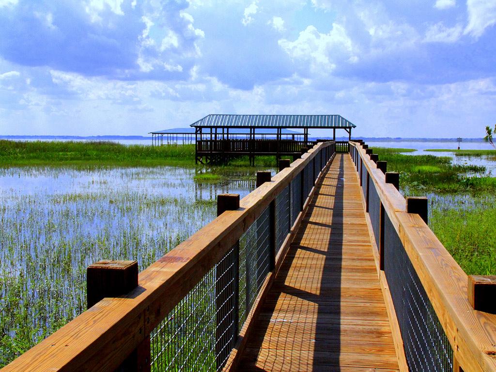 Vida selvagem e Parque Natural da Flórida