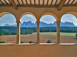 Entrada Tapas Y Vino En Montserrat