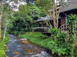 Discover Mae Kam Pong - Private tour, Chiang Mai