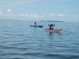 Bike and Kayak Tour, Miami Area - FL
