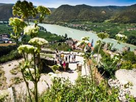 The Secrets of Wachau Valley Tour with Wine tastings and Boat Cruise, Vienna