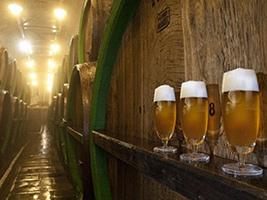 Czech beer tasting, Prague