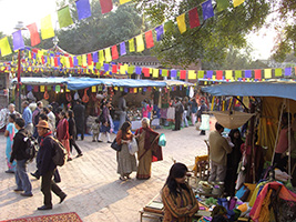 Half day Shopping Tour of Delhi, Delhi and NCR