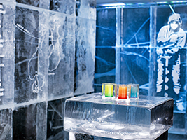 Ice Cold Experience in Stockholm - Private, Stockholm