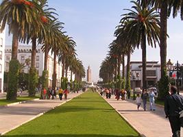 Imperial Rabat - Private Half Day Tour, Casablanca