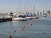 Excursión a Punta del Este desde Montevideo