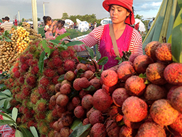 Night tour of Siem Reap's street food, Siem Reap - North