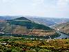 Douro Valley tour in minibus