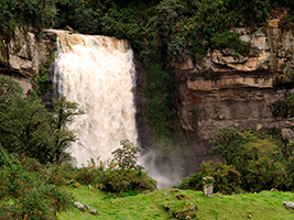 Trek through Sueva Falls, Bogota