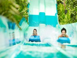 Adventure Cove Waterpark With Transfer