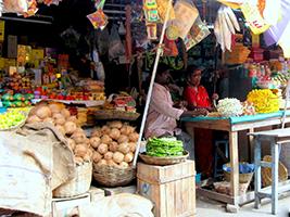 Pondy Bazaar private walking tour, Chennai (Madras)