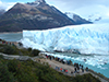 Glaciers National Park and boat tour