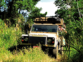 4x4 safari, Montego Bay (and vicinity)