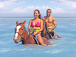 Horseback ride and swim, Montego Bay (and vicinity)