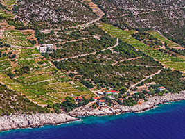 Peljesac wine tour - private, Dubrovnik-South Dalmatia