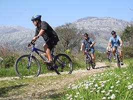 Konavle Vineyards bike tour, Dubrovnik-South Dalmatia