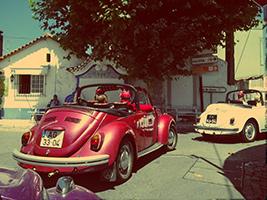 Beetle Ride with Wine Cellars Visit, Lisbon