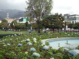 Bogota City Tour, Bogota